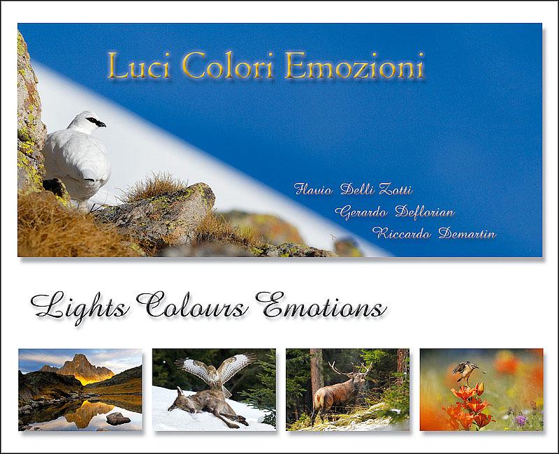Documento senza titolo - Libro immagini a colori ...