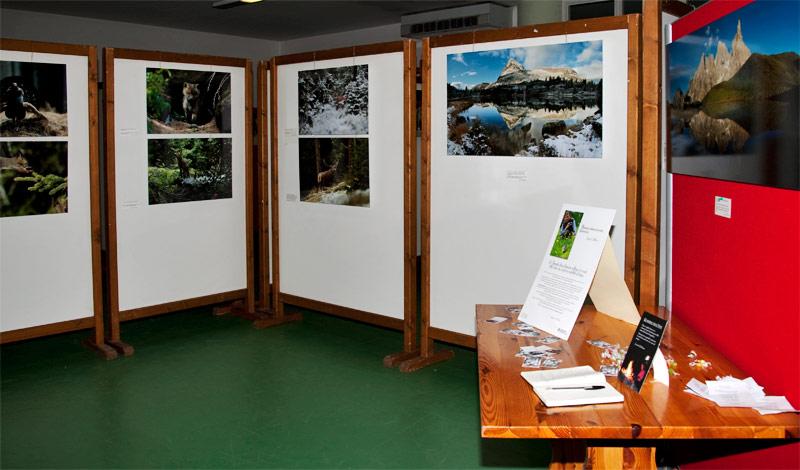 Illuminazione per mostra fotografica: fantastiche immagini su mostra