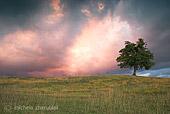 Paesaggio naturalistico segnalato dal forum della fotografia naturalistica