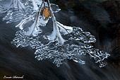 fotografia ravvicinata, articolare di una foglia di ghiaccio