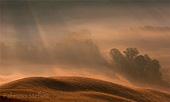 campagne senesi all'alba nella nebbia mattutina