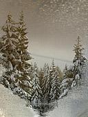 riflesso di paesaggio invernale al passo rolle - foto naturalistica segnalata